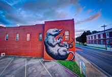 The Mole by ROA