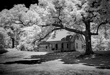 Infrared Photography Workshop