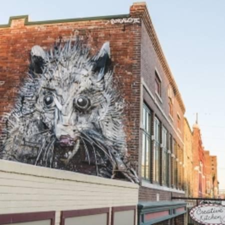 Public Art Opossum By Bordalo Ii Fort Smith Arkansas